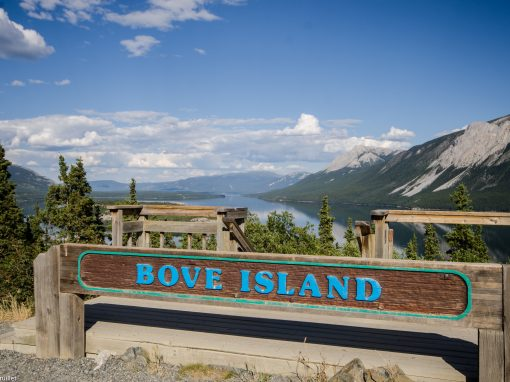 Bove Island